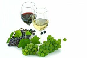 Weingläser mit Trauben