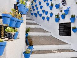 Singlereise Andalusien Costa de la Luz 6