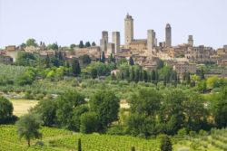 Singlereise Toskana 3