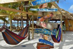Singlereise Curaçao – eintauchen ins Karibische Paradies! 2