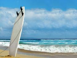 Fuerteventura für Singles 1