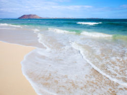 Fuerteventura für Singles 3