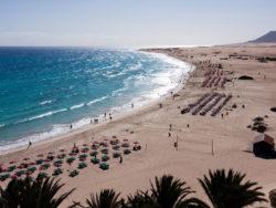 Fuerteventura für Singles 5