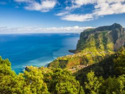 Singleurlaub auf Madeira 1