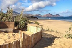 Singleurlaub auf Madeira 4