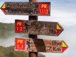 Singlereise Madeira 6