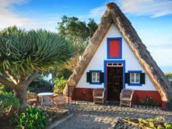 Singleurlaub auf Madeira 6