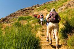 Singlereise zur Blumeninsel Madeira 2