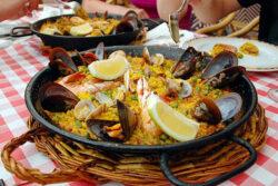 Singlereise nach Mallorca 2