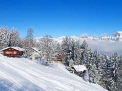 Skiurlaub für Singles nach Mittersil 6