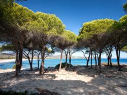 Sardinien für Singles 6